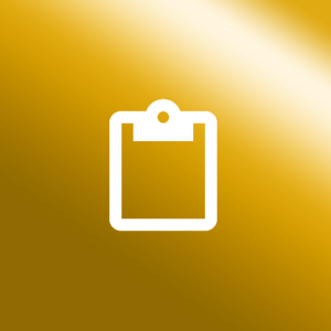 Icon Schicherheitsanalysen gold