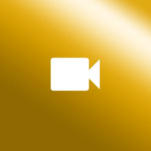 Icon Sicherheitstechnik gold