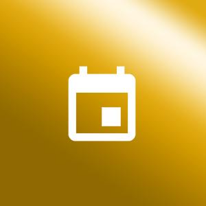 Icon Veranstaltungsschutz gold
